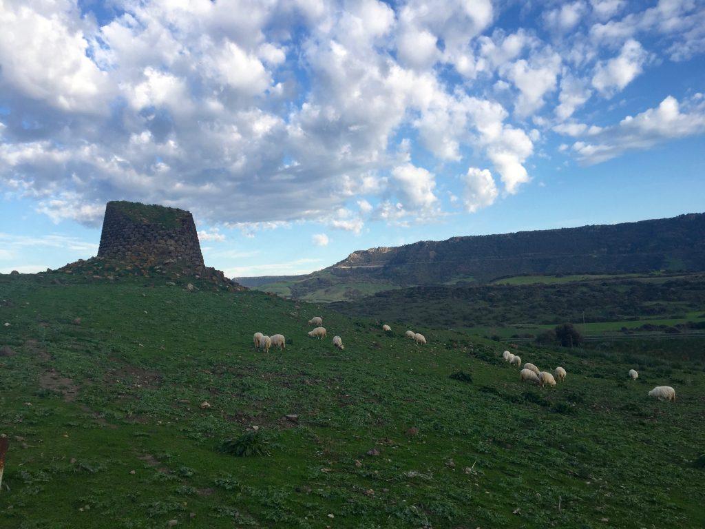 Day Trip to North West Sardinia