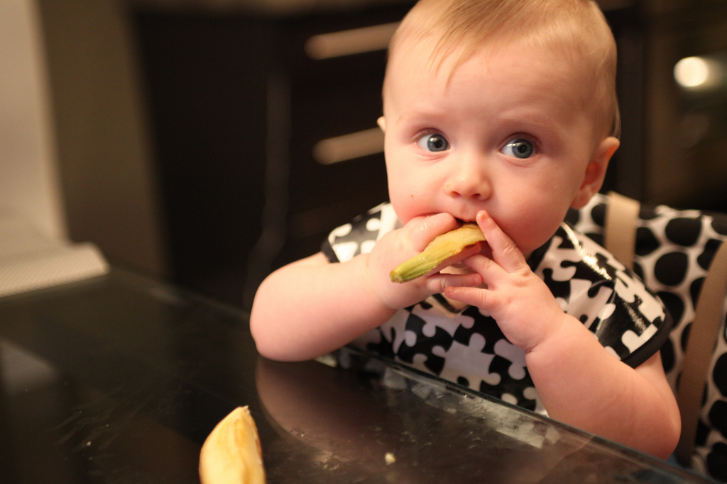 The Top 50 Baby Led Weaning Ideas